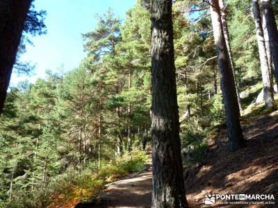 JUEVES Senderista - Cuerda de las Cabrillas y Valle de la Barranca;excursiones de fin de semana ruta